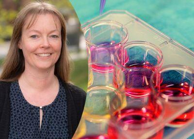 Monika Ehnman är en av de 36 forskare som nu tilldelas forskningspengar från Barncancerfonden.