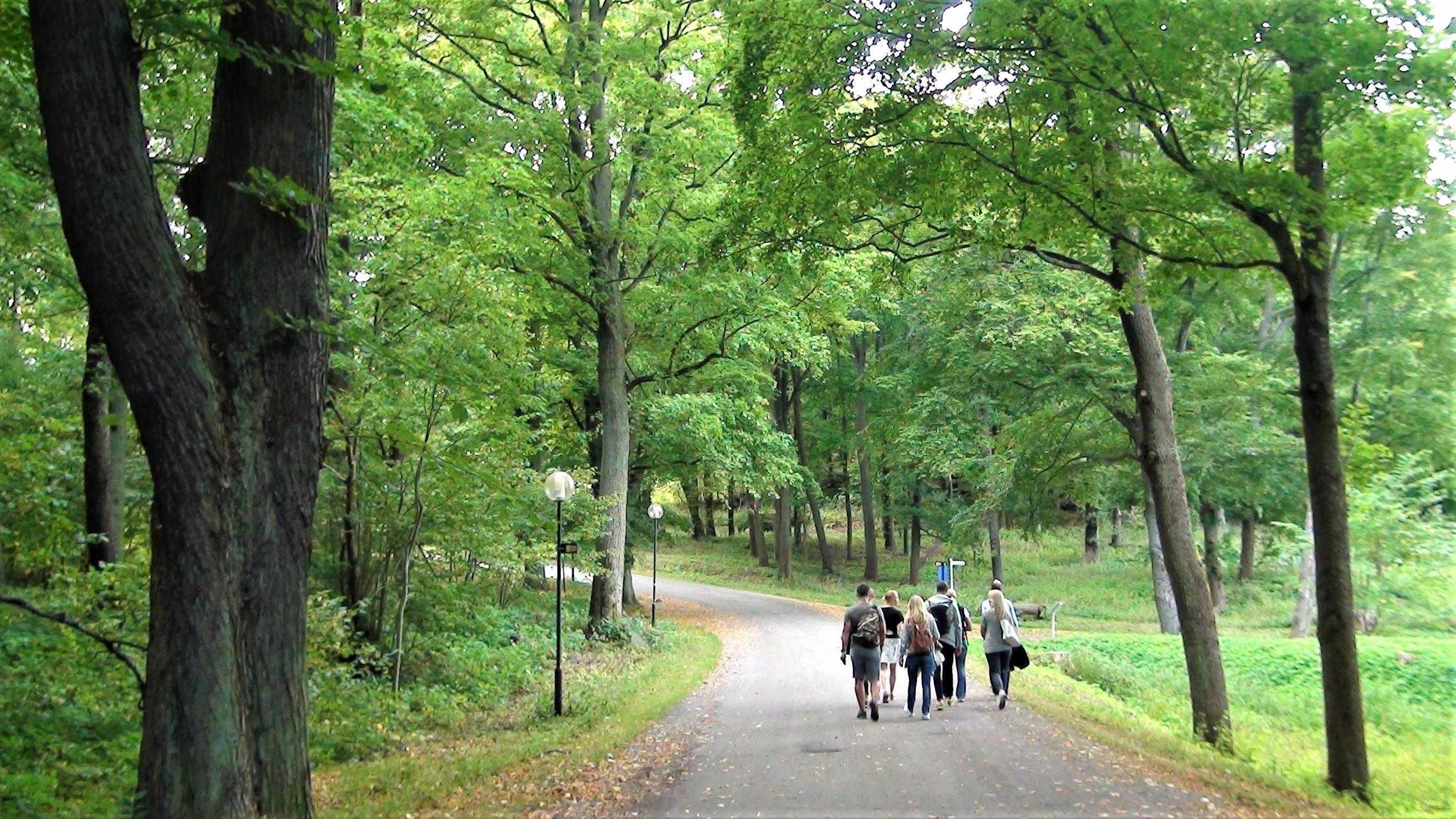 Walk of Hope genomförs under barncancermånaden i september.