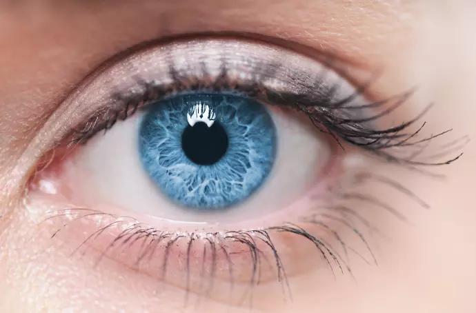 8 vanliga myter om syn och ögonhälsa  6abbd2e2e95ef